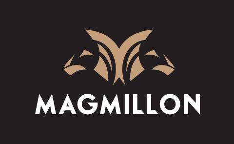 Magmillion – nowy wymiar inwestycji